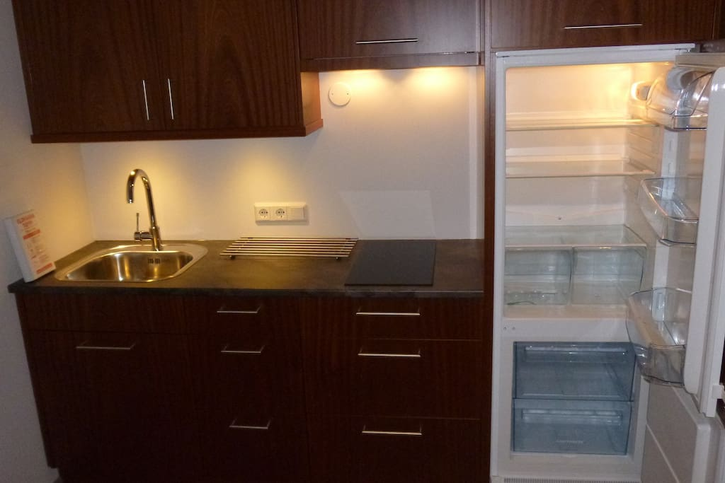 Kitchen cabinet with stove, sink and refrigerator