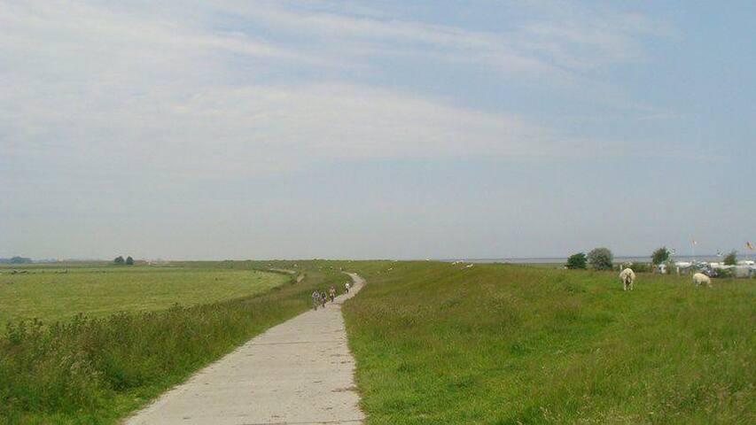 Radweg zwischen Hooksiel und Horumersiel