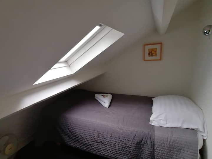 Kleine zolderkamer midden in Maastricht