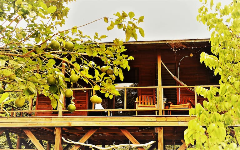 Sanpopo Cottage A·Fully Equipped Tree Top Get-away