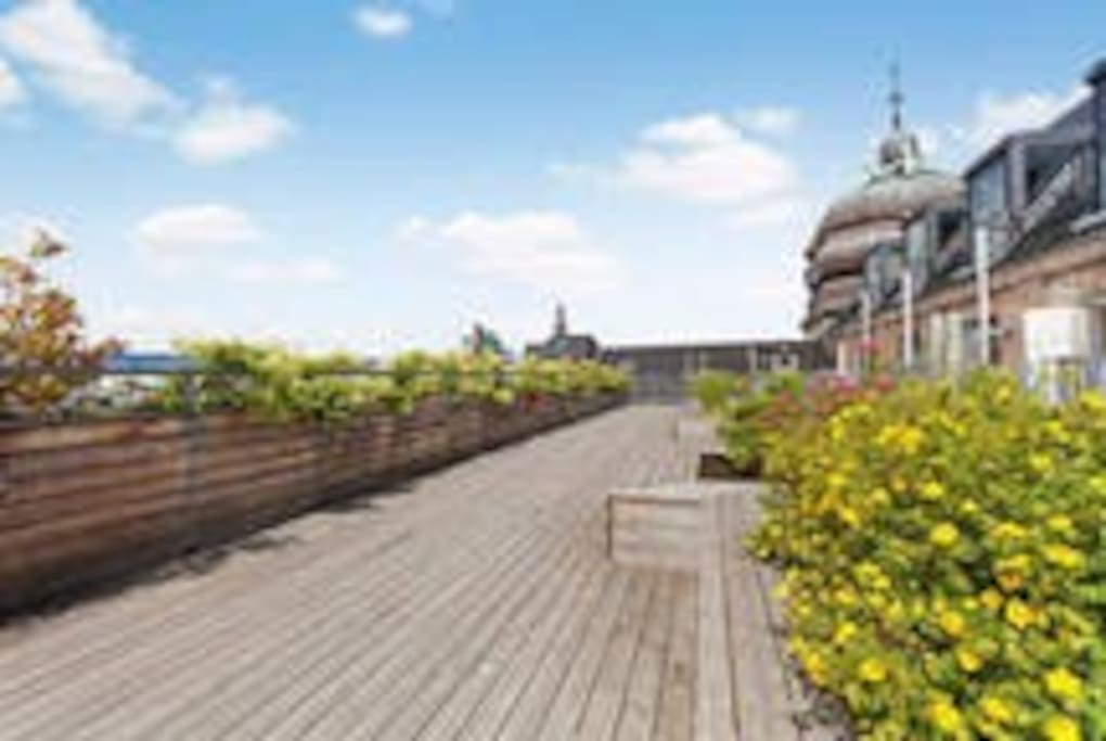 Access to 3 roof terraces .