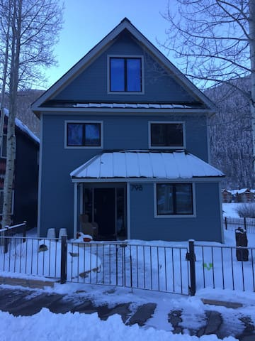 Family House for Fun & Skiing In Telluride - Telluride - House