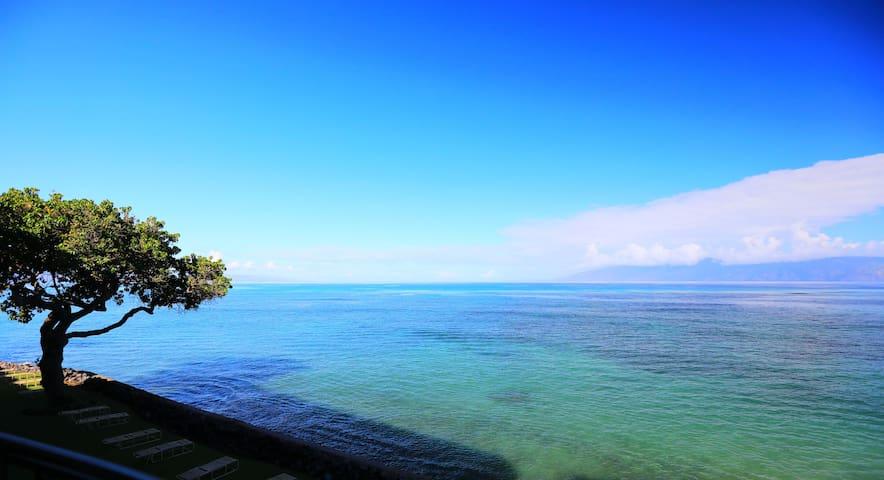 Oceanfront Condo-End Unit