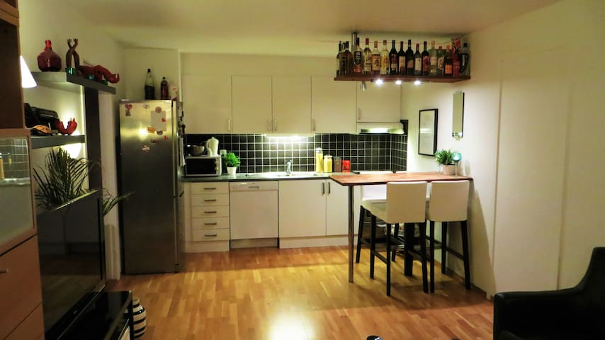 Cosy apartment with balcony and free parking - Trondheim - Daire