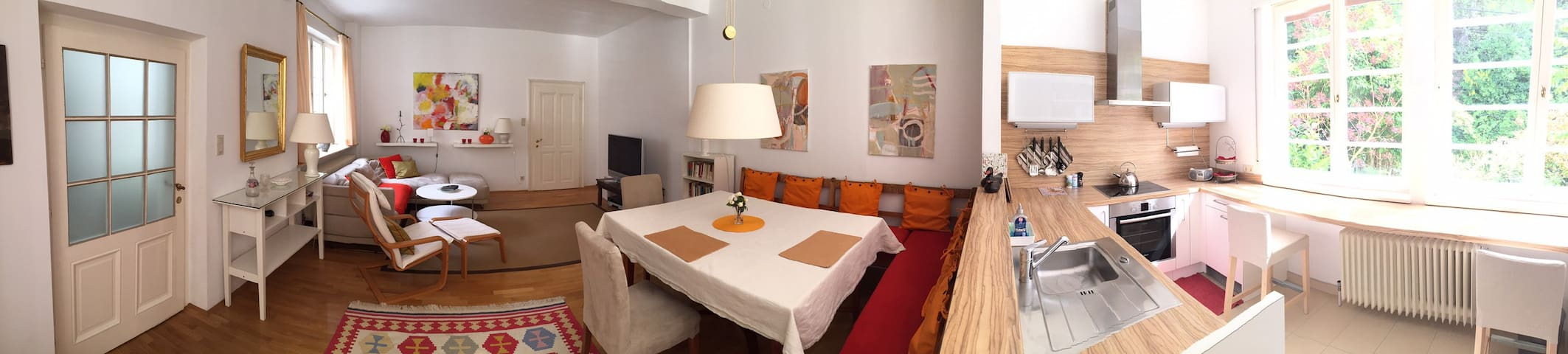 Comfortable and - Baden - Appartement
