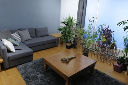 beau grand 4½ bien situé dans immeuble tranquille - Sherbrooke - Lejlighed