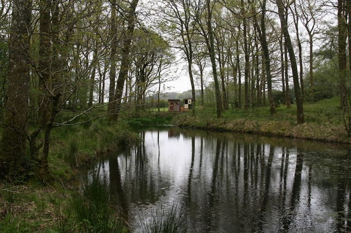 Calming Cabin & Hot Tub - Carmarthenshire - Chatka