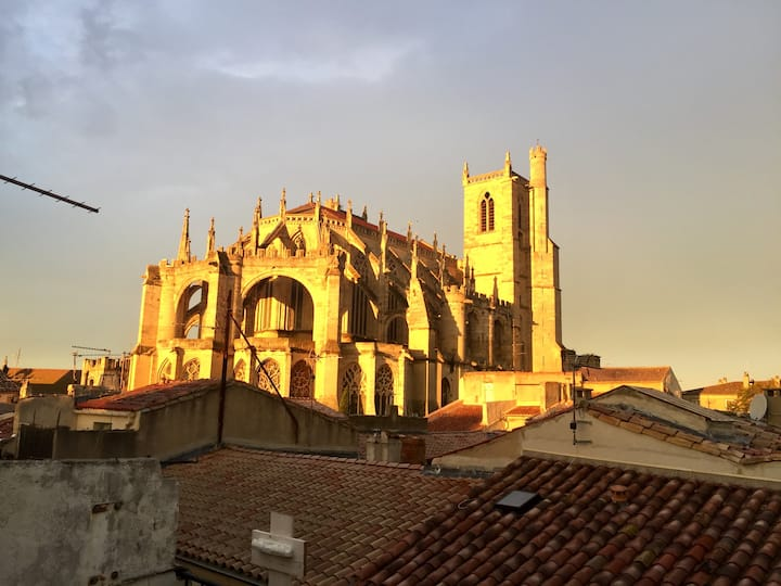 Vue  imprenable sur Cathédrale