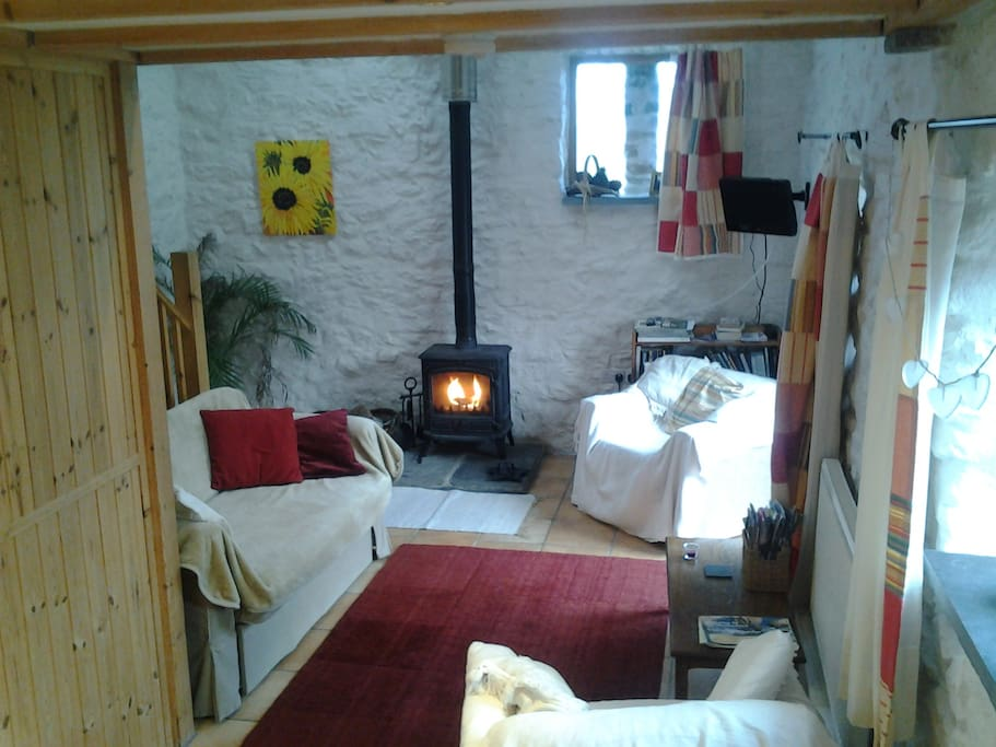 A snug living area with wood burning stove and beautiful high ceilings. There is a small, double sofa bed.