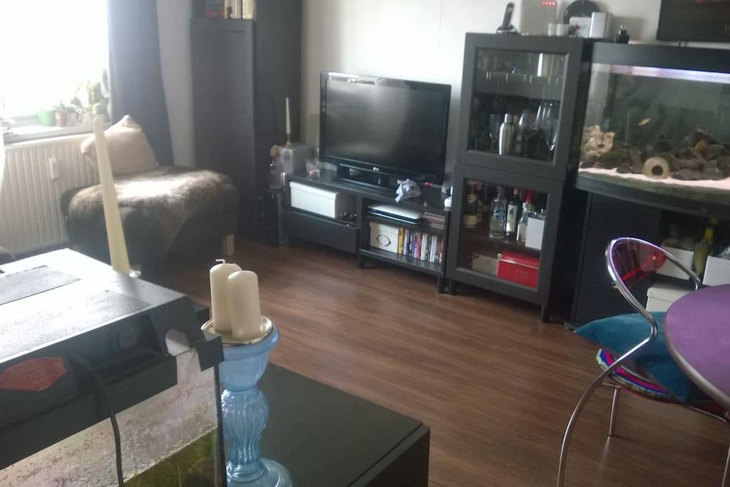 Unser Wohnzimmer- inklusive großem Aquarium und Fernseher