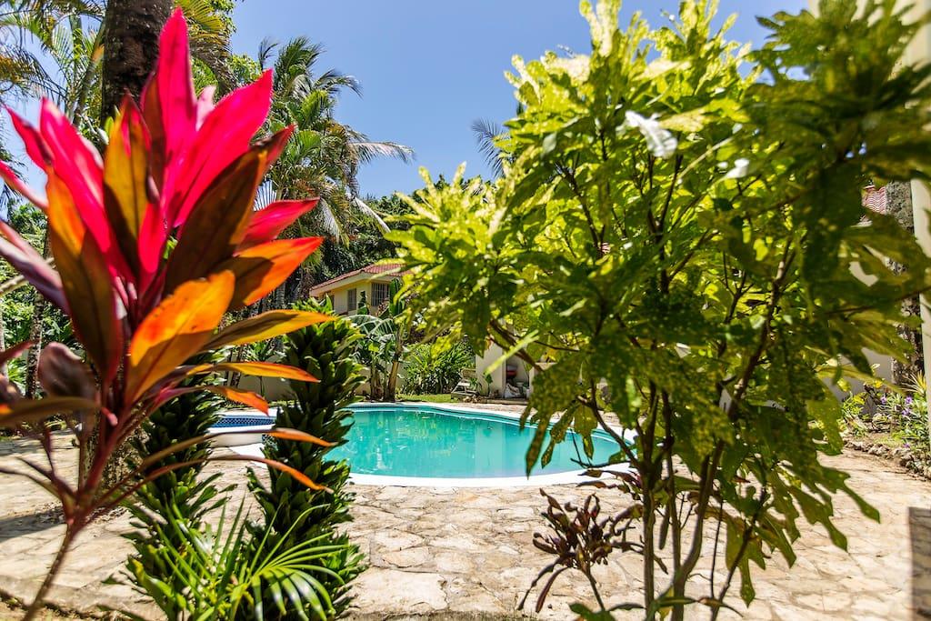 Giardino e piscina privato