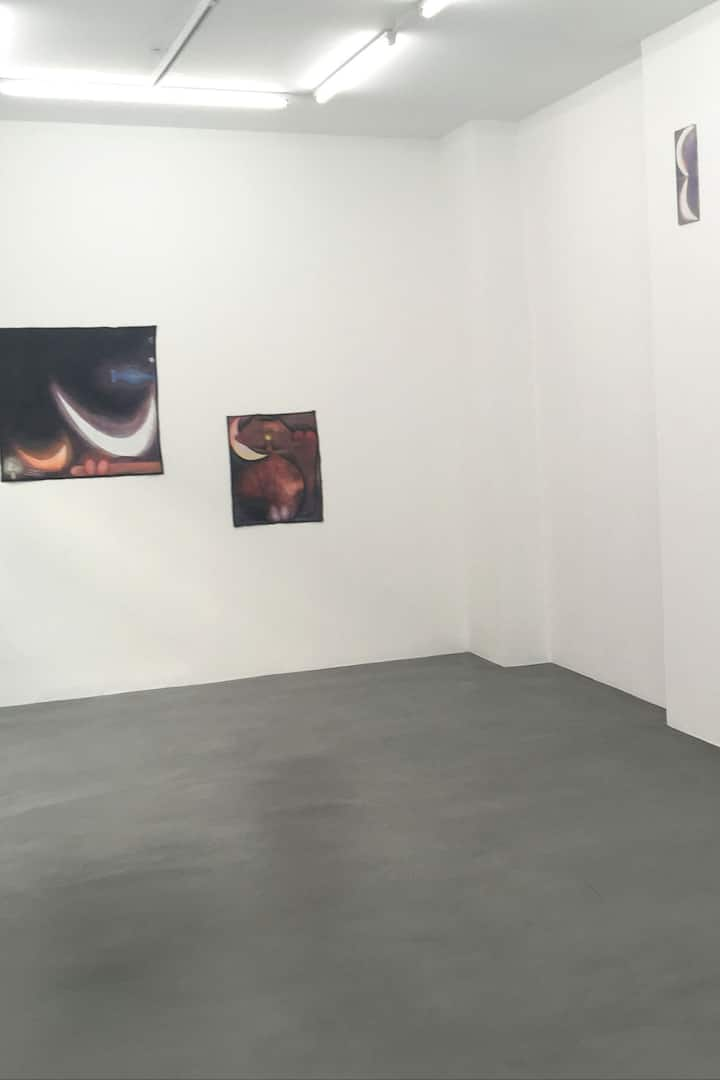 Santiago de Paoli -Jocelyn Wolff gallery