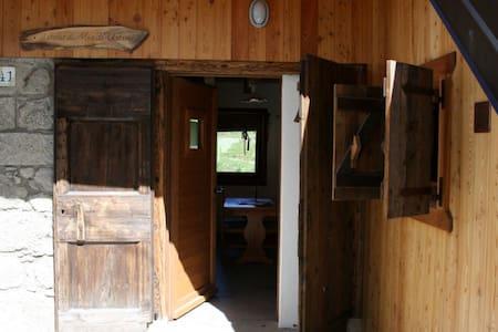 Mia's Chalet: ski, trekking, bike - Comeglians - Rumah