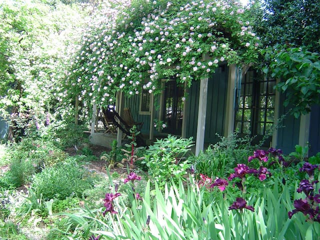 Charming Rose Covered Cottage  - Guerneville - 獨棟