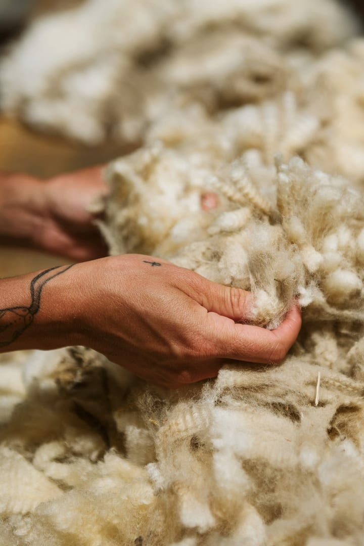 Touch the wool