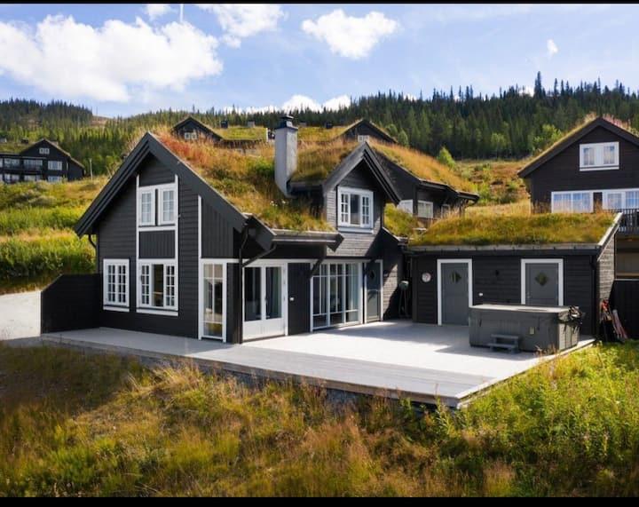 Hytte med ski inn/out i Nesbyen alpinsenter