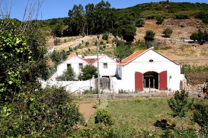 Moinhos da Gozundeira - Sobral de Monte Agraço - Bed & Breakfast