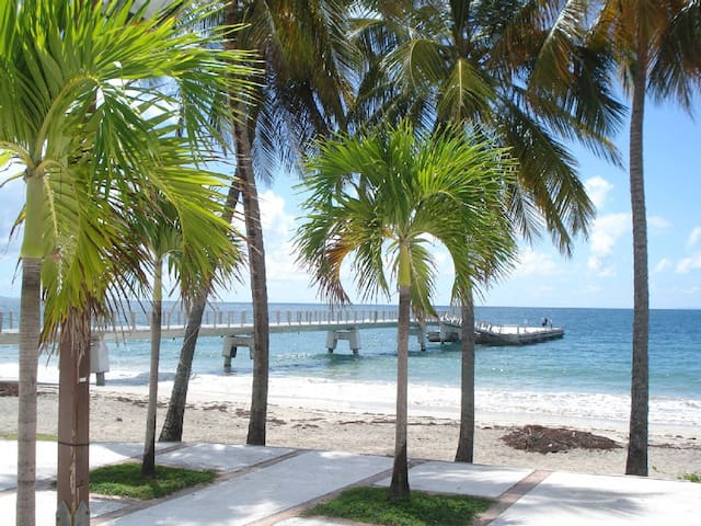 Location T2 de 54m², Diamant,Martinique