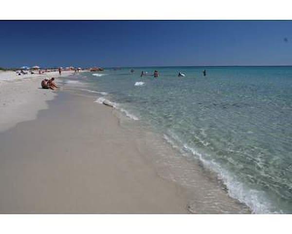 APARTMENT 5 MN FROM THE SEA SARDINI - Siniscola - Pis
