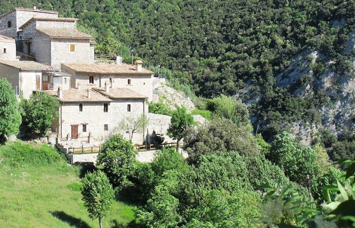 House & garden in ancient village