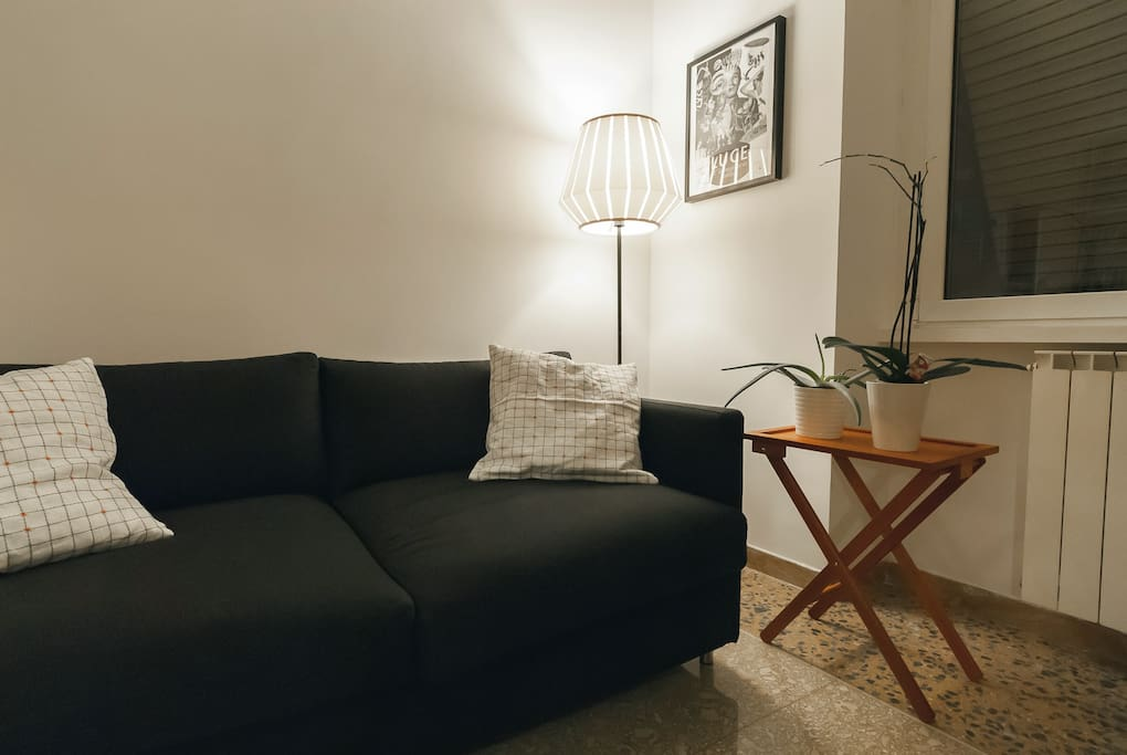 The living room: the sofa bed is super comfortable for two people.