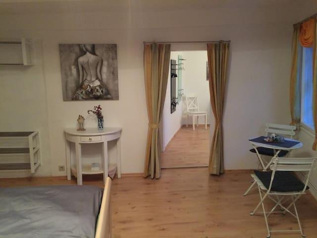 Modern & Historisch im Zentrum WF - Wolfenbüttel - Apartamento