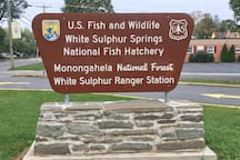 One mile away. Ranger Station, Visitor's Center, and hatchery with trout in all stages.  The Monongahela National Forest and Greenbrier State Forest are very close to the Manse.
