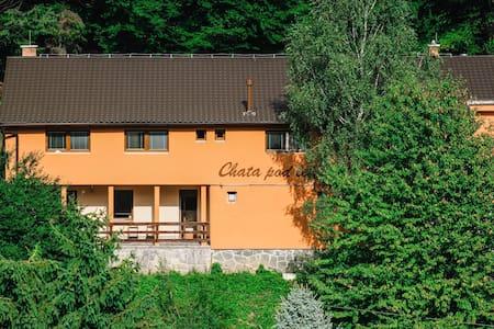 Chata Pod lesom - Drienica