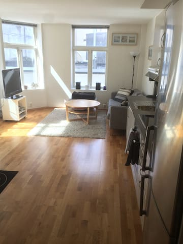 Nice apt in the heart of Bergen - Bergen