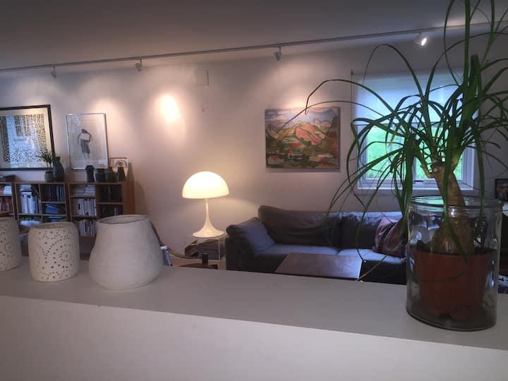 A stylish modern home close to Oslo