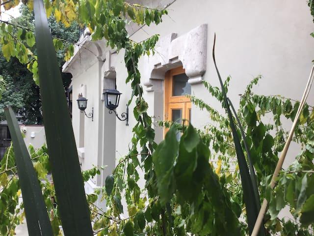 Historic duplex Roma -private terrace -best street