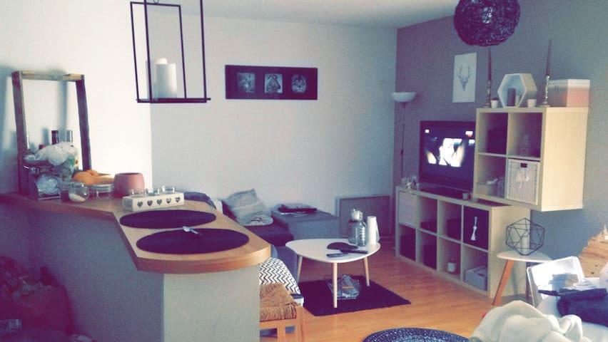 T2 très agréable non loin de Toulouse - Villeneuve-Tolosane - Wohnung