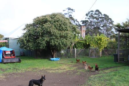 The Ragged Tier Cherry Garden