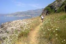 gianola (sea crossing the Park of gianola)