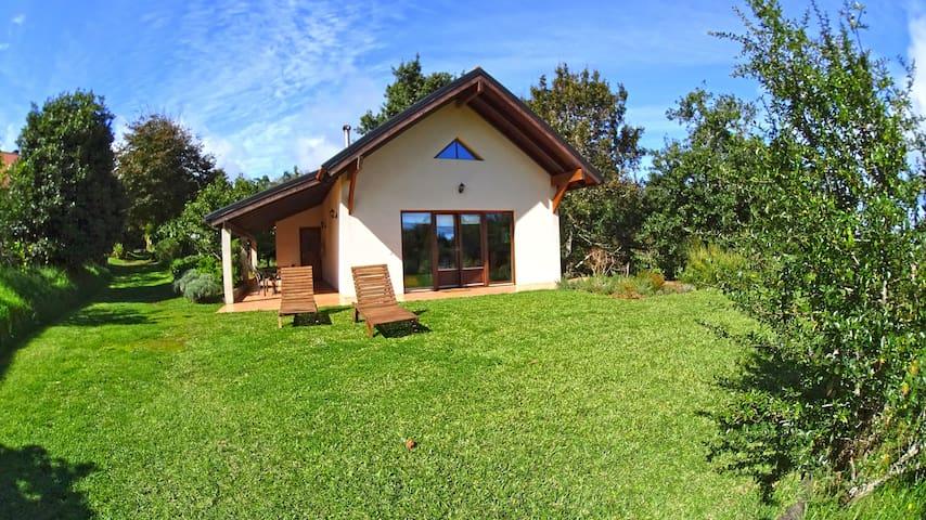 Quinta Pântano- House Urze Lilás T2 - Santo da Serra  - Cabaña
