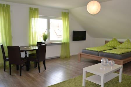 Charmante, helle Studiowohnung - Speyer - Apartemen