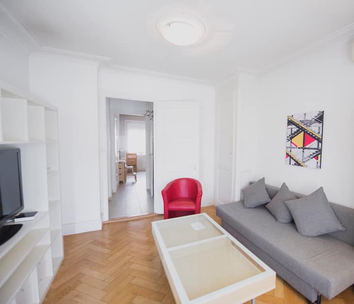 Great apart Geneva center top floor close Old town