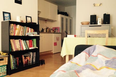 Cosy, modern, centrally located studio - Antwerpen