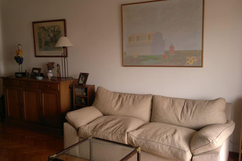 Full light living room