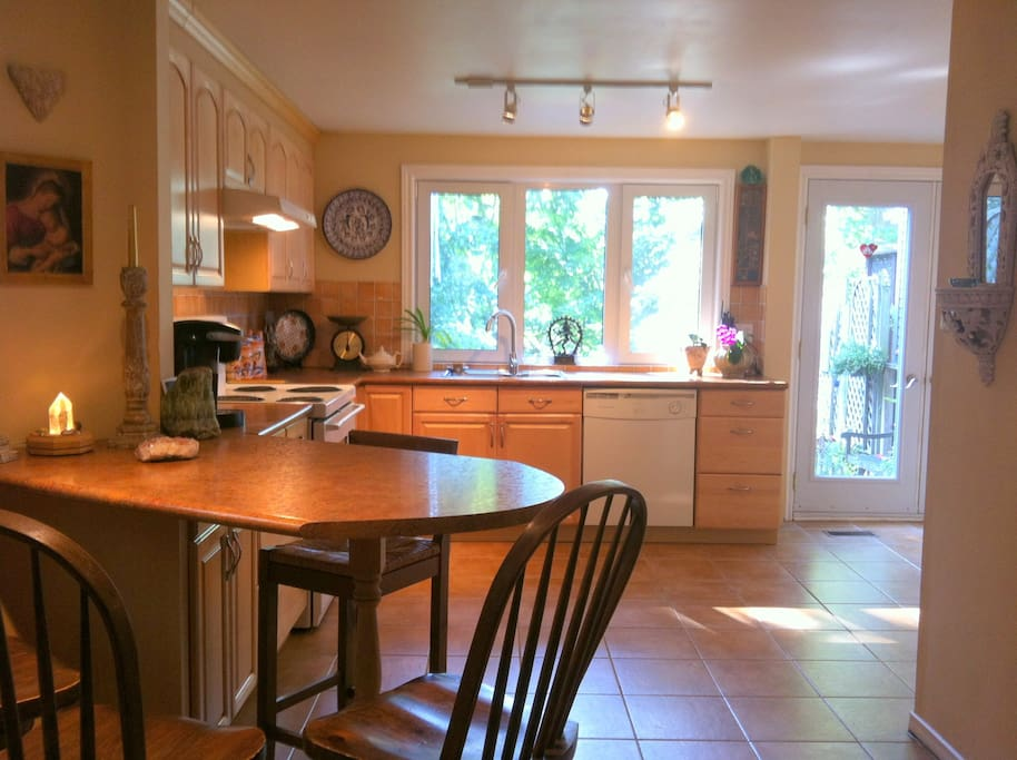 Shared kitchen leading out to garden