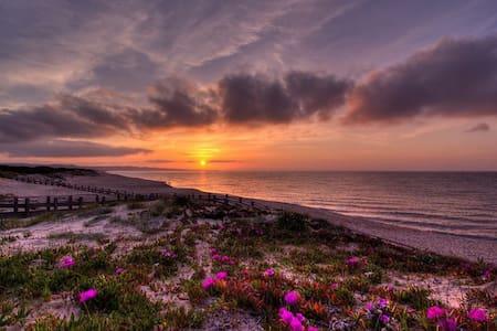 ...a pochi passi dalla spiaggia.. - Platamona