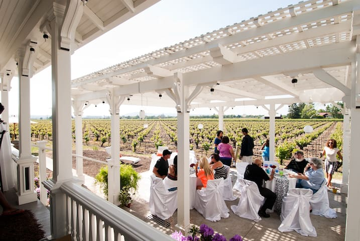 Wine Country Stay in the VINEYARDS! - Fulton - Rumah