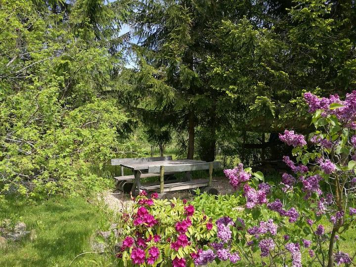 klimatyczny apartament Rybnica Leśna