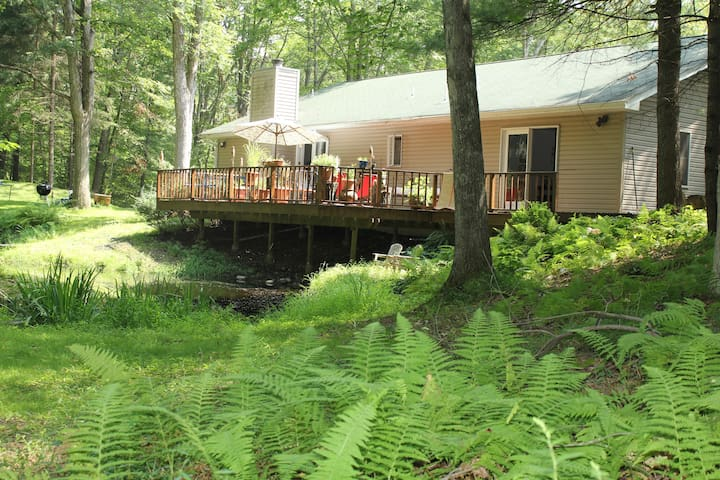 Lake House in the Idyllic Woods - Sandyston - House