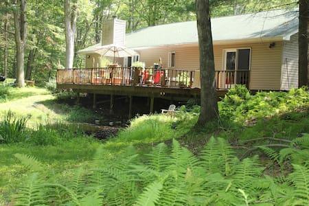 Lake House in the Idyllic Woods - Sandyston