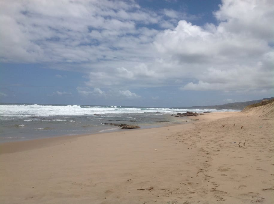 A stroll along the beach