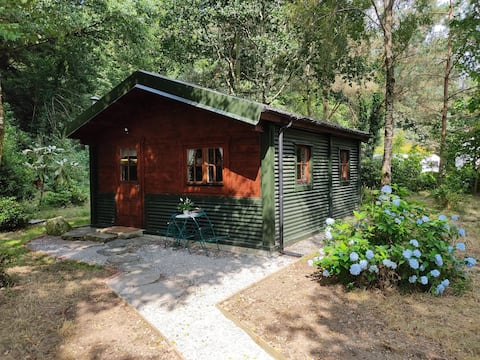'Forest Lodge' charming self contained cabin in woodland setting.