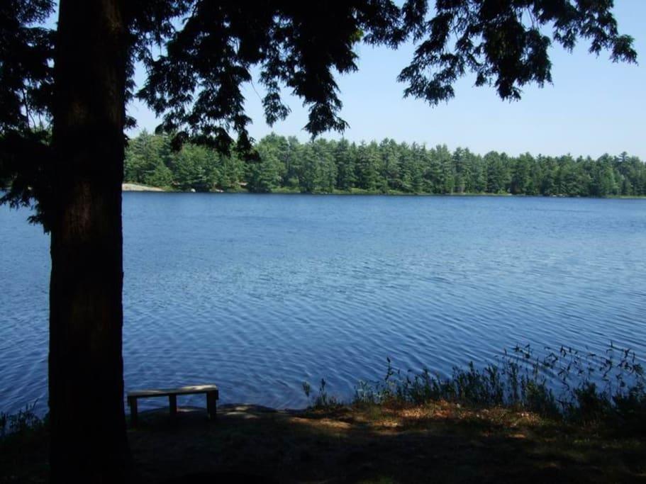 Look at that lake!