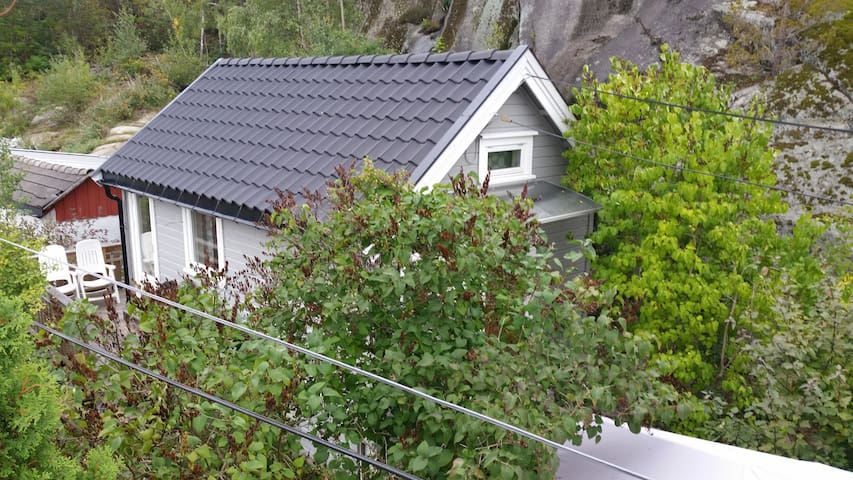 Small separate mini House for rent