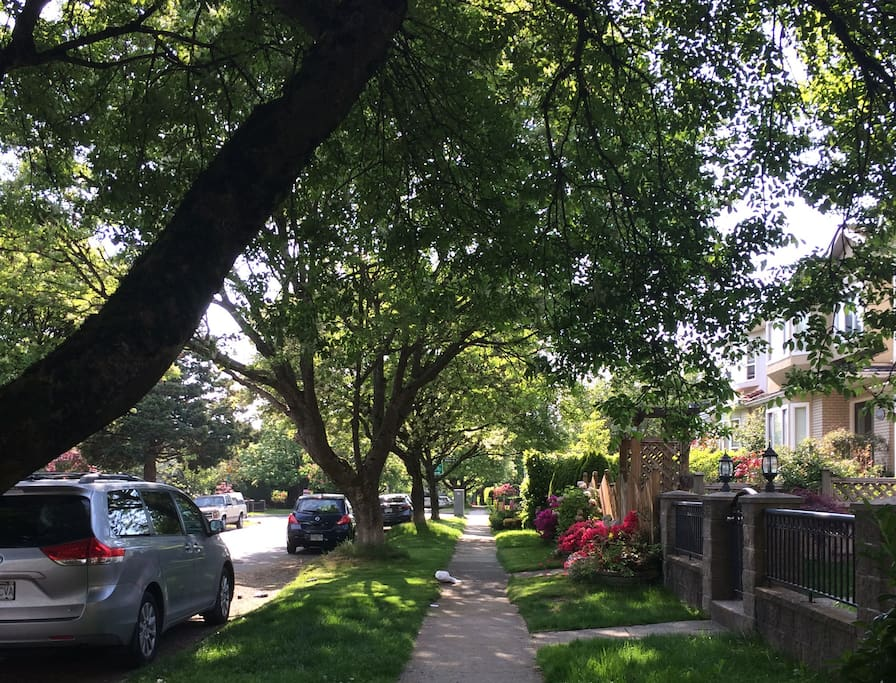 Beautiful neighbourhood.
